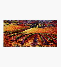 Tuscan Wine Country Photographic Print