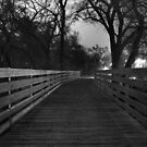Bridge - black and white   by nkorompilas