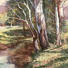 Peaceful Creek, Kangaroo Valley by Lynda Robinson