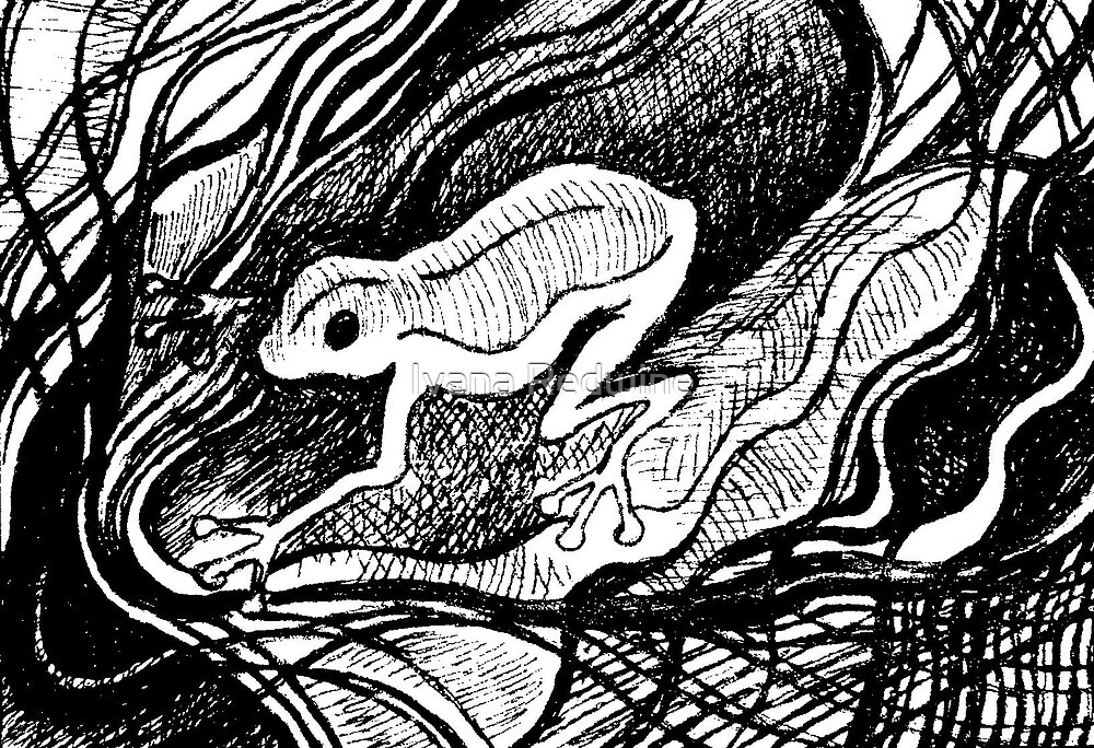 Drawing of an Imaginary Frog #2 – February 23, 2010 by Ivana Redwine