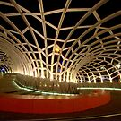 Webb Bridge, Docklands by Fiona Kersey