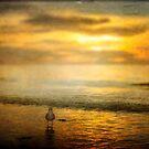 Sunset Walk by Shari Mattox-Sherriff