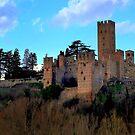 Castell'Arquato by annalisa bianchetti