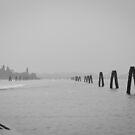 Venice Lagoon by Phill Danze