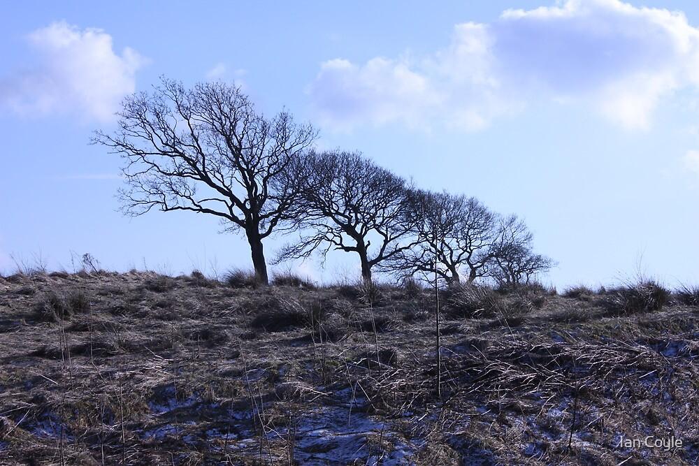 West Lothian Landscape by Ian Coyle