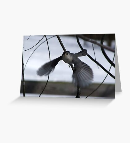 See ya Later Titmouse Greeting Card