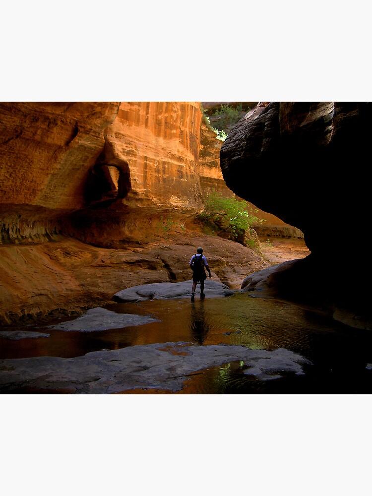 emergent hiker by LumenLux