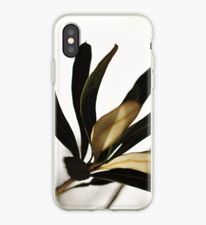 Chiaroscuro iPhone Case