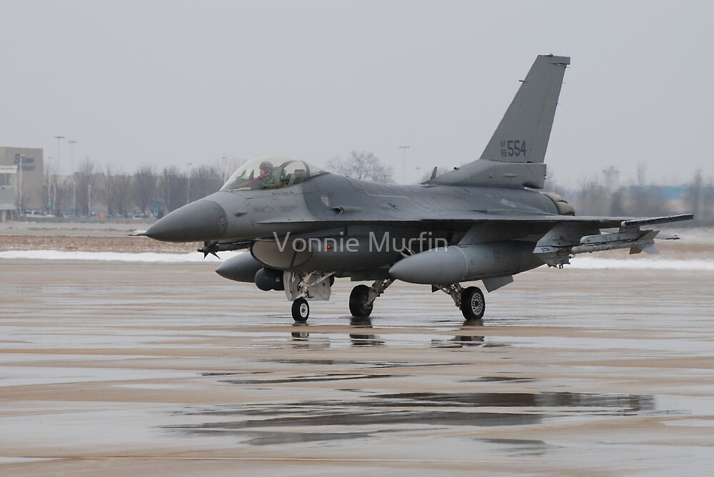 Aircraft 5 by Vonnie Murfin