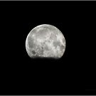 Lunar See Bright With Glee by Yamini MacLean