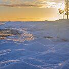 FREEZING SEA, FINNISH GULF by Svetlana Korneliuk
