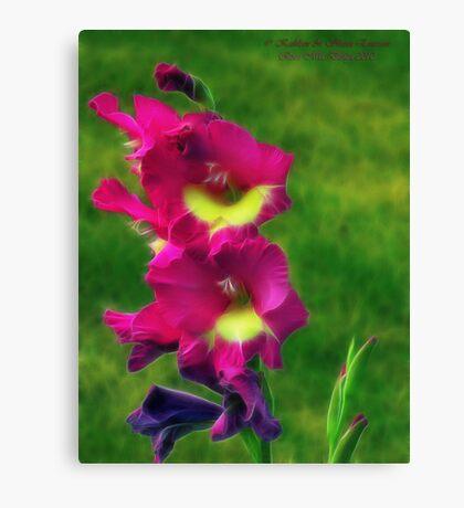 Pink Glads Canvas Print