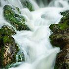 Waterfall Close Up by Ralph Goldsmith