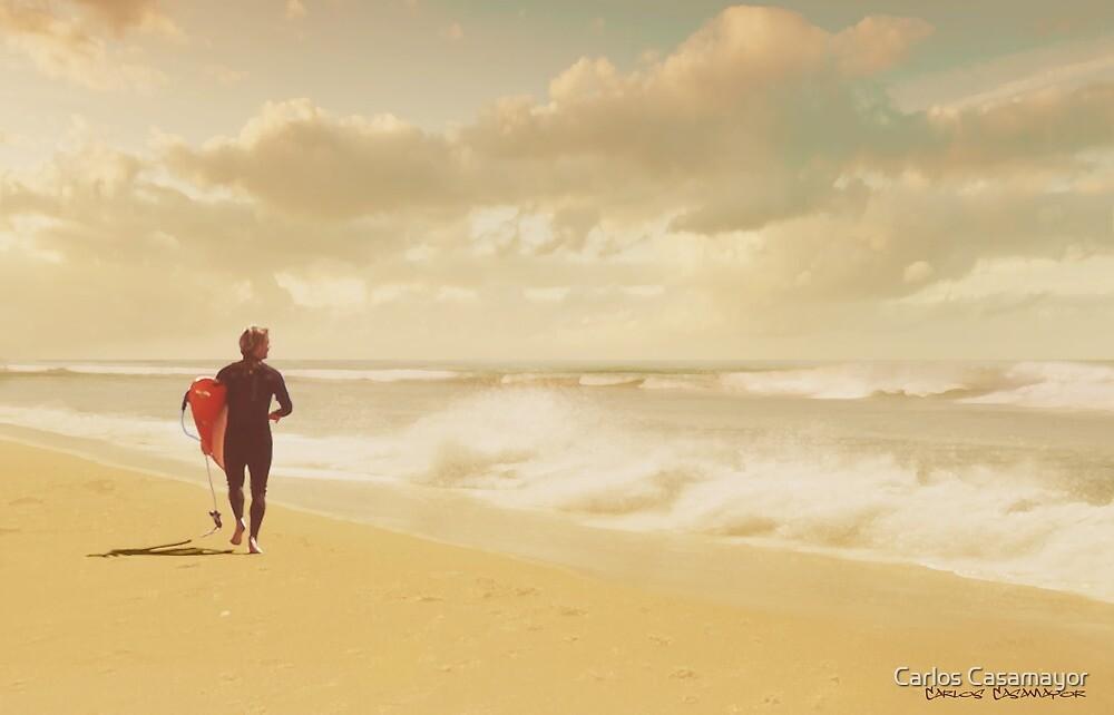 The Surfer by Carlos Casamayor