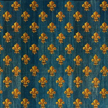 GOLD FLEURS DE LYS IN BLUE Antique French Tapestry by BulganLumini
