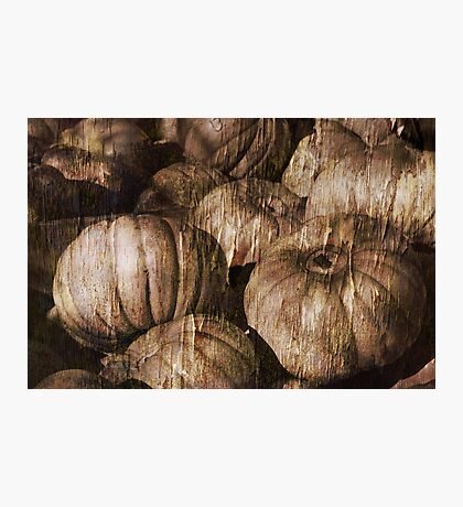 Vintage Pumpkin Photographic Print