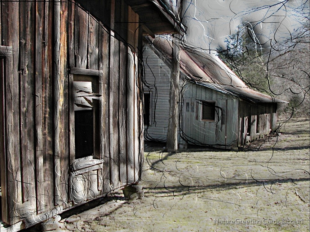 Ghost Town 01 by NatureGreeting Cards ©ccwri