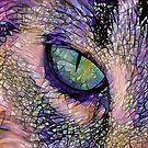 Cat's Eye version 2 by EOSXTi