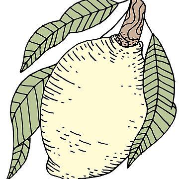 Limón de aliciamo