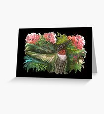 Batzilla - Batty for Hummingbirds by Tz StLouis - pink background  Greeting Card
