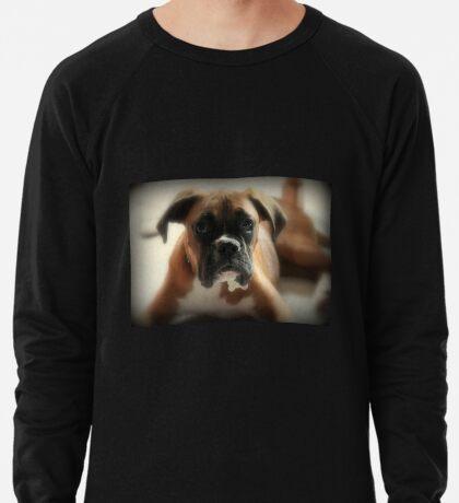 Gesicht der Unschuld ~ Boxer-Hundeserie Leichtes Sweatshirt