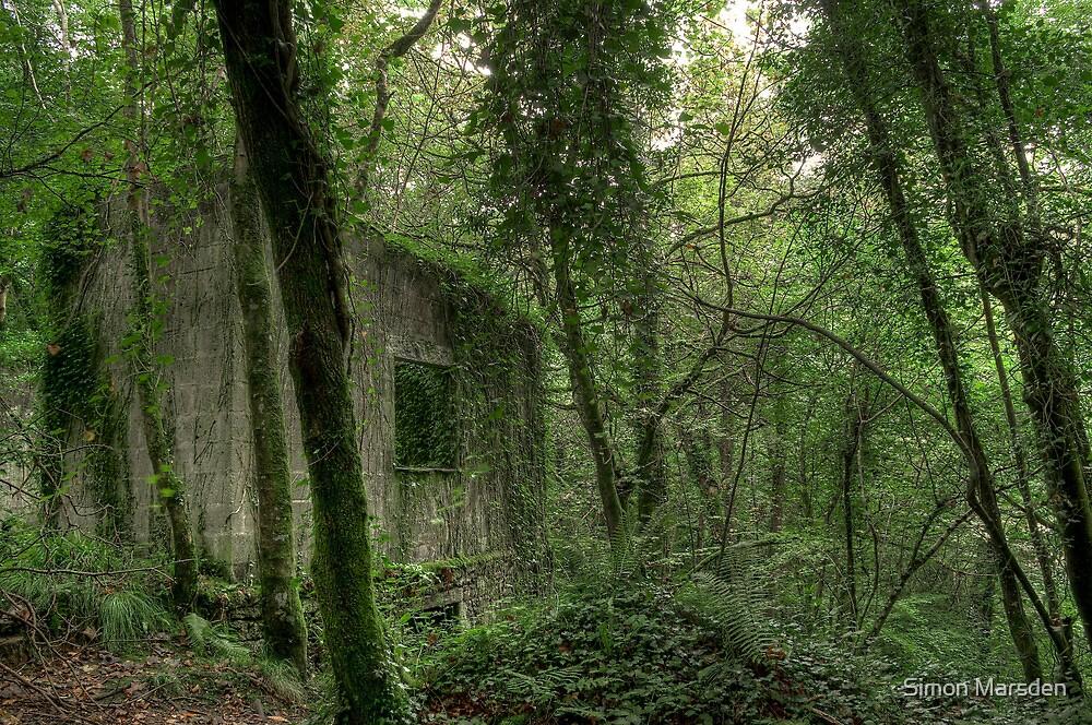 Ruin at Kennal Vale by Simon Marsden