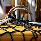 Ropes by Bluesrose