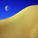 Dune by Michael  Bermingham