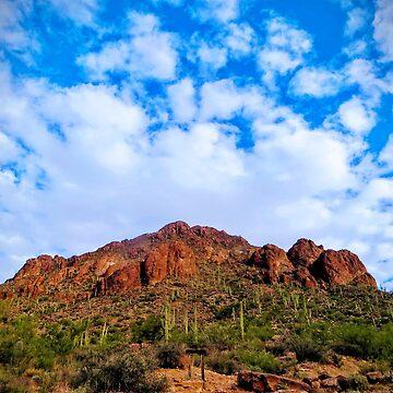 Tucson Mountain Park Arizona 2014 by FrenchToasty