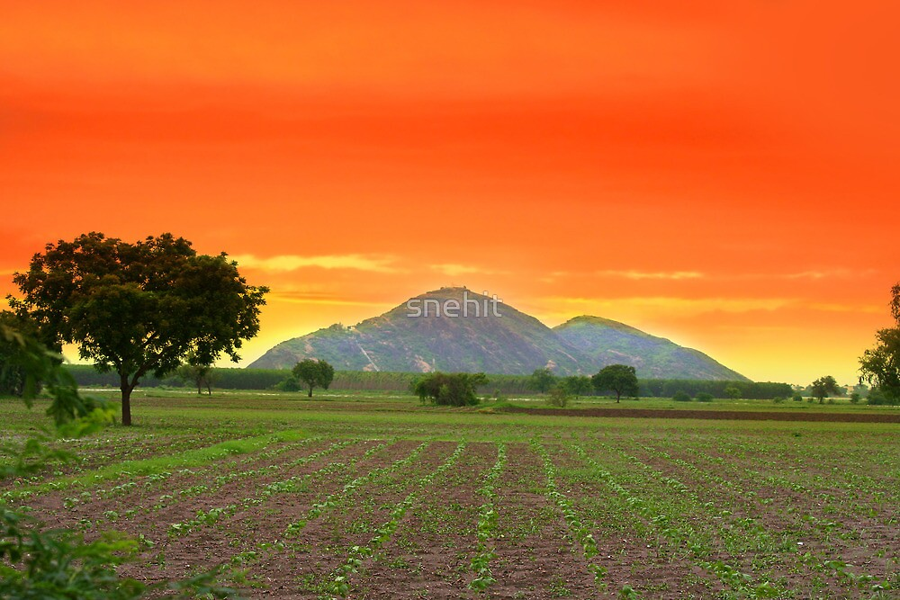 Indian landscape by snehit