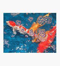 Swim in the Bubbly Photographic Print