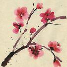 Flowering cherry. Spring. by Svetlana Mikhalevich