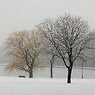Let it snow by Dalmatinka
