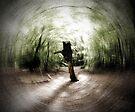 In the Deep Dark Forest by Nigel Bangert