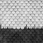 SHELTER / Weiß, Schwarz von Daniel Coulmann