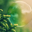 Bush Bubble by Ashli Zis
