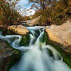 Little Waterfall  by Ralph Goldsmith