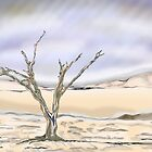 desert and a tree in a storm by jackpoint23
