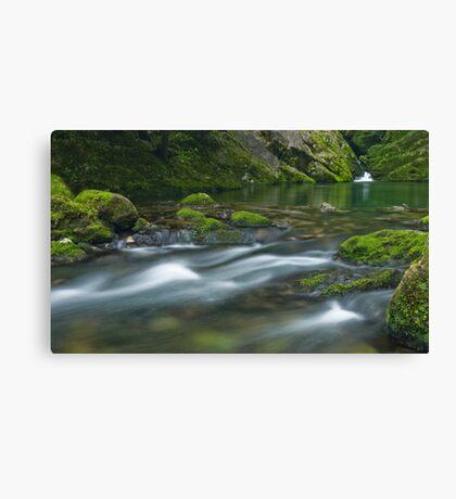 Riwaka River Canvas Print