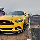 Yellow GT by Vicki Spindler (VHS Photography)