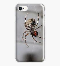 Carnegie, PA: Orb Weaver 1 iPhone Case/Skin