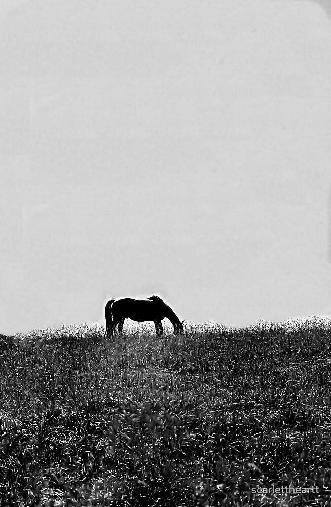 Lonely by scarlettheartt