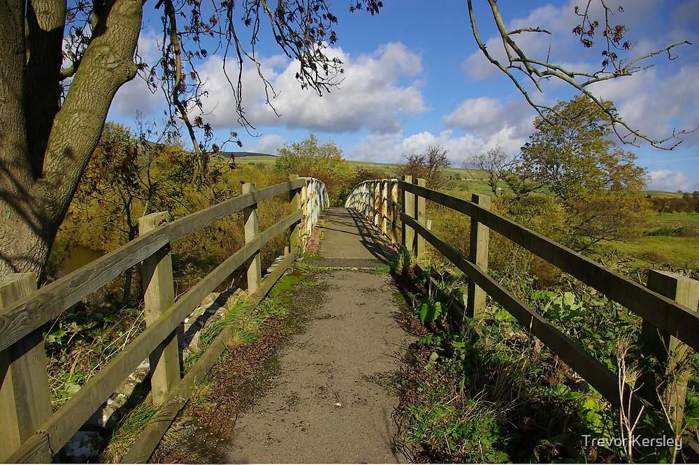 Footbridge to the Dales by Trevor Kersley