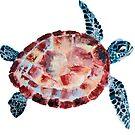 Schildkröten von Kuhtina
