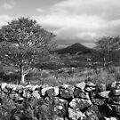 Connemara  .Ireland by EUNAN SWEENEY