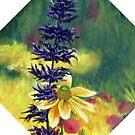 Bloomin' by Scott  Nordstrom