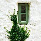 The  Green  Window by EUNAN SWEENEY