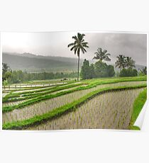 Amazing countryside..... 4 Poster