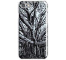 Banyan Tree iPhone Case/Skin