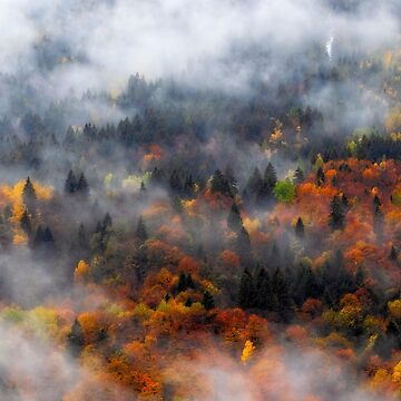 Clouds and fall colors by birba
